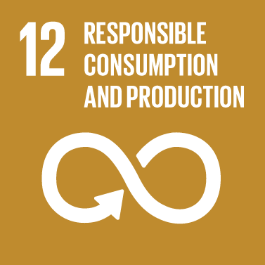 Responsible Consumption & Production Icon