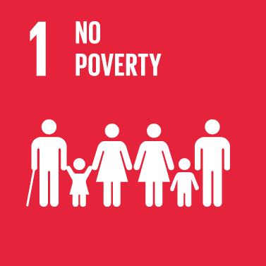 No Poverty Icon