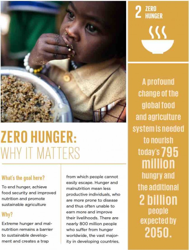 Goal 2: Zero Hunger | The Worlds Largest Lesson